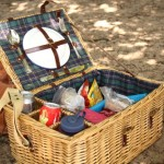 An overflowing picnic basket, Drunense Duinen