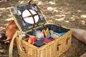 An overflowing picnic basket, Drunense Duinen