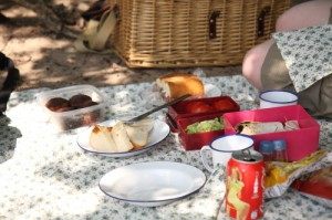 A large spread of picnic foods, Drunense Duinen, the Netherlands