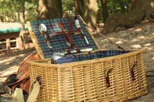 Picnic at Drunense Duinen, old fashioned picnic basket